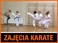 Wakacyjne zajęcia karate w CKE